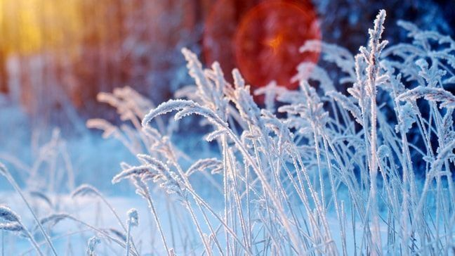 7 Tips To Help You Save This Winter