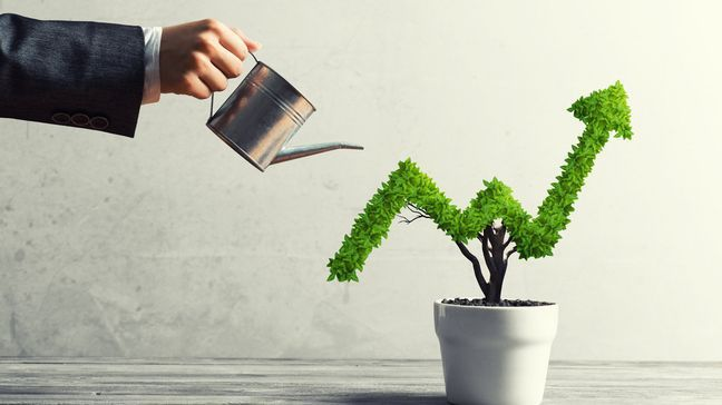 Finance growth out of business income