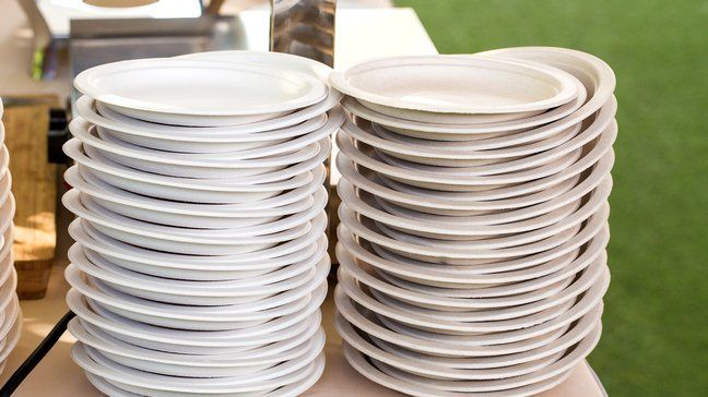 Stretch Your Budget Further By Eliminating Disposable Products - Paper plates