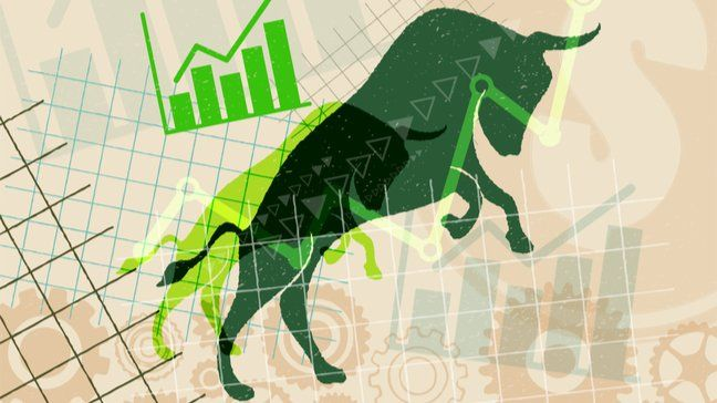Investing 101: What is a bull market? - bull market