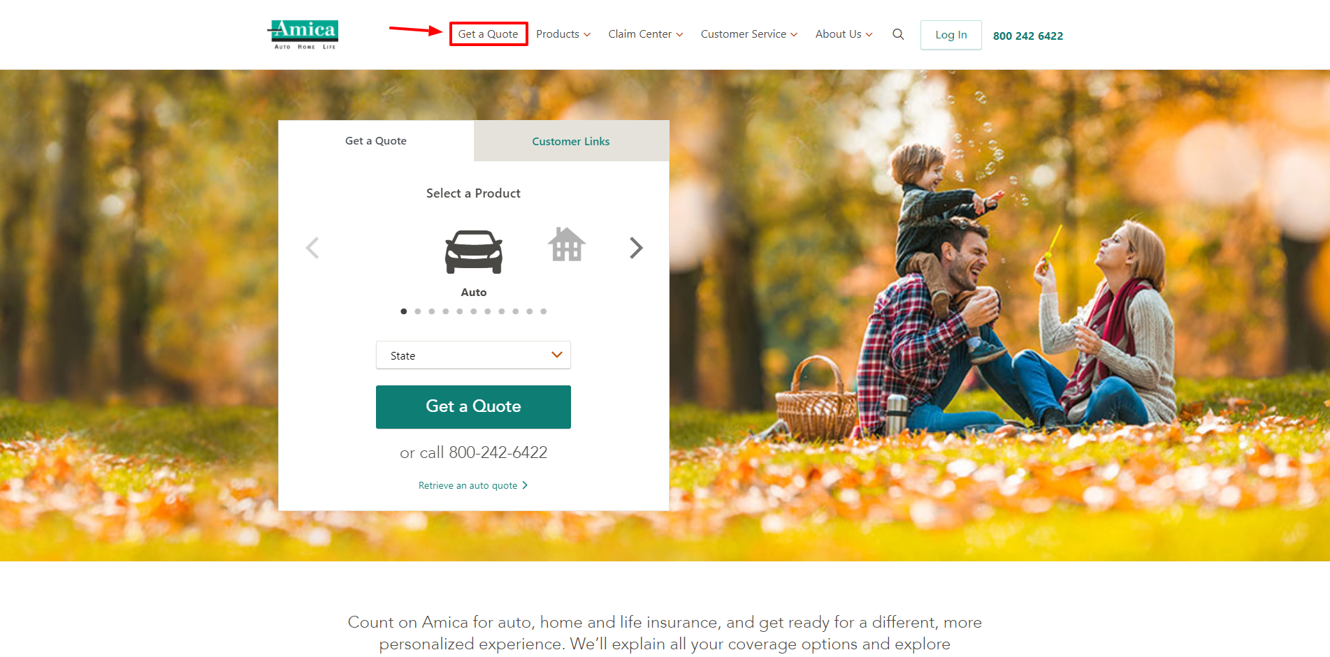 Amica Insurance Review - Getting Started
