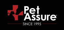 Protect your pet's health with these 6 best pet insurance companies - Pet Assure