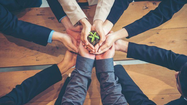 Invest Like A Pro: How To Invest In Companies - How to invest in socially responsible companies
