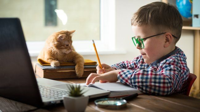 Here's How To Homeschool Your Kids Safely During COVID-19