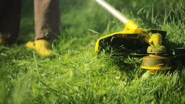 Hiring A Landscaper - Is It Worth It? - Ongoing services